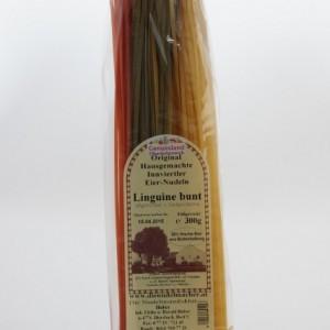 Linguine bunt (427x640)